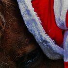 Santa's Little Helper by Sophie Giraudeau