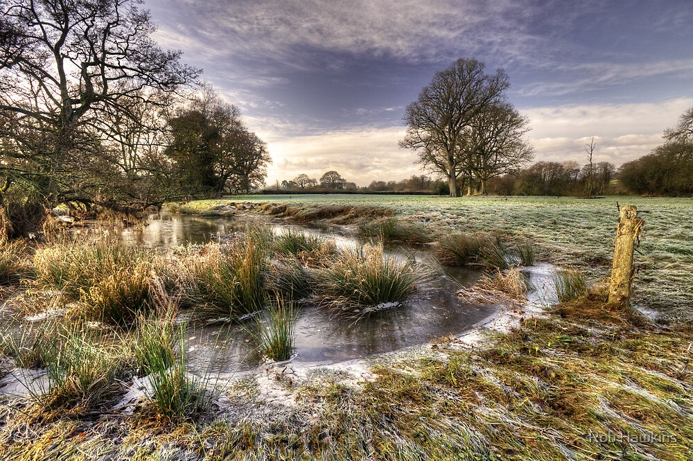 The  Frosty Field  by Rob Hawkins