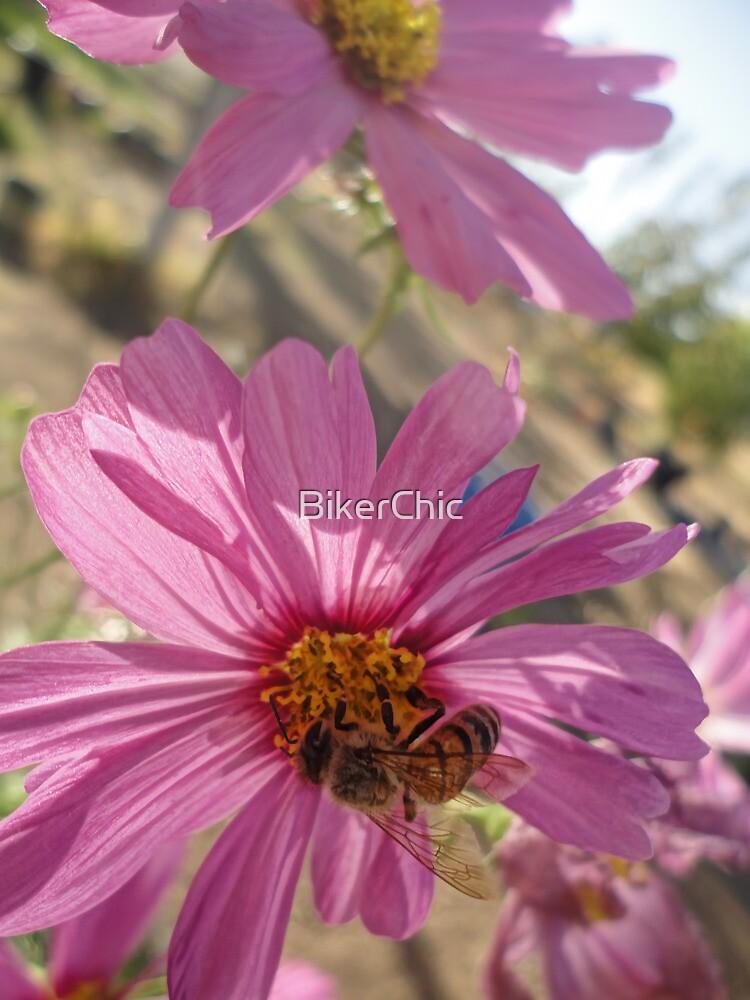 Bee Hard at Work by BikerChic