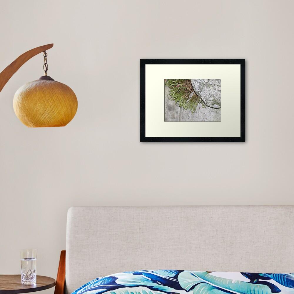Meditating  Framed Art Print