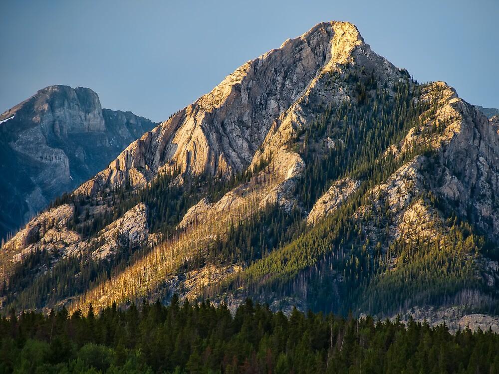 Yellow Mountain Top by James Wheeler