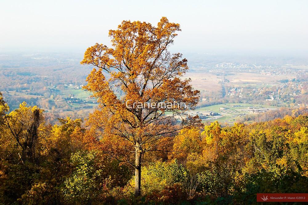 Golden Tree by Cranemann