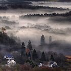 Aberfoyle Mist by Karl Williams
