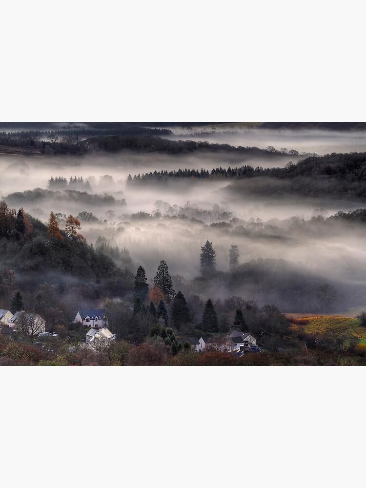 Aberfoyle Mist by Shuggie