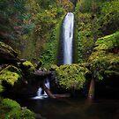 Gorton Creek Falls I by Tula Top