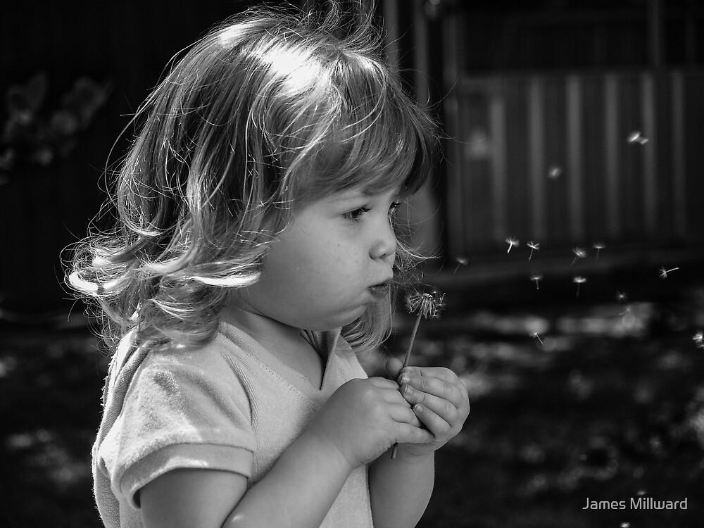 Making a wish by James Millward