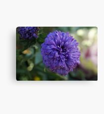 Purple flower Macro Canvas Print