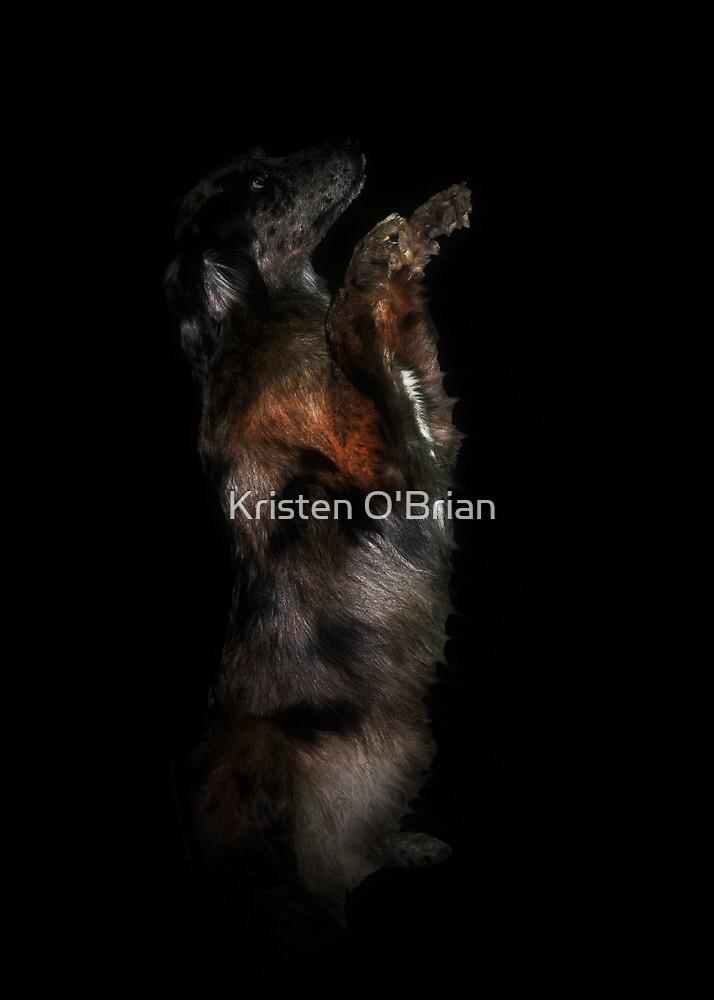 Treat? Pleeeeease??? by Kristen O'Brian