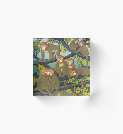 Monkeys Acrylic Block