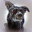 Snow Day by artstoreroom