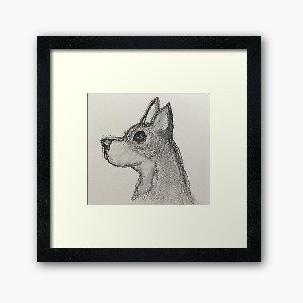 Jack The Chihuahua Framed Art Print