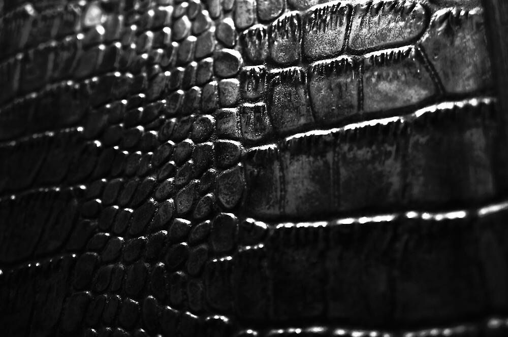 Gator by Anthony Cummings