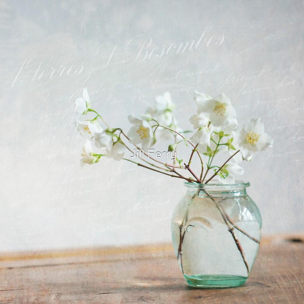 Lightness by Jill Ferry