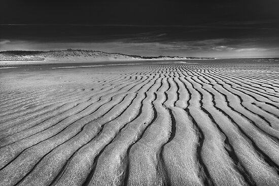 Unusual Tranquility - Black and White Photography by Artist Dapixara