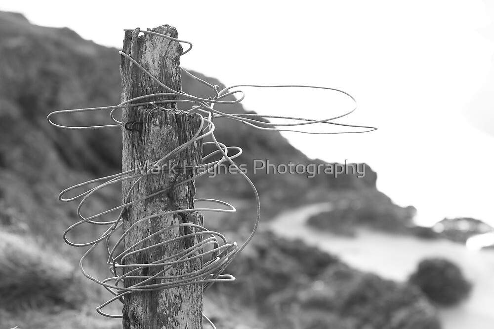 Post & Wire fence by Mark Haynes Photography