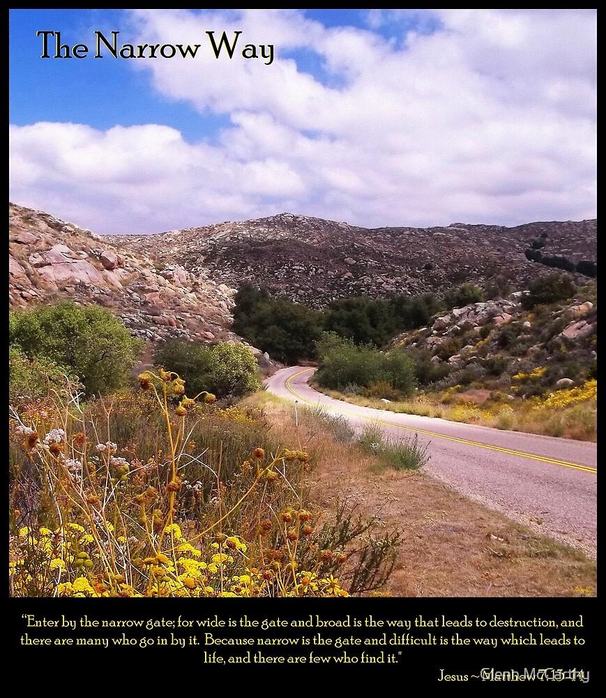 The Narrow Way by Glenn McCarthy