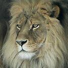 Lion's face by Penny Rinker