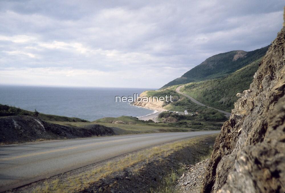 Road to Corneybrook by nealbarnett