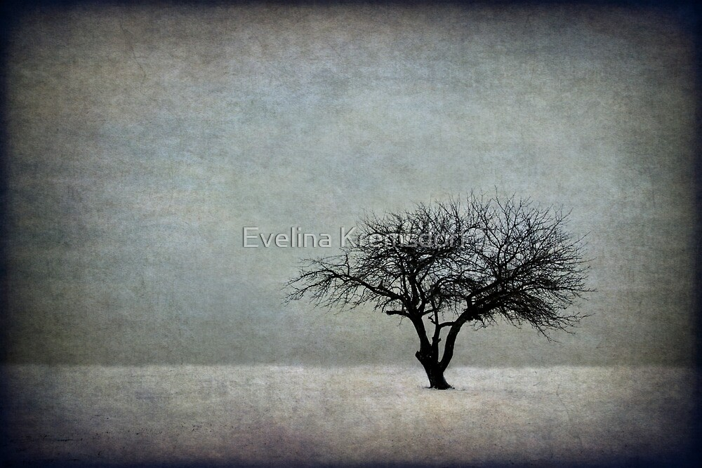In The Bleak Of Midwinter by Evelina Kremsdorf