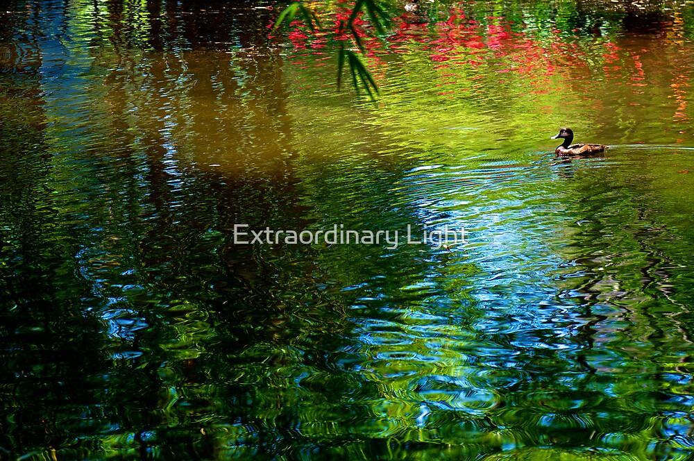 Lake Impressions #19 by Renee Hubbard Fine Art Photography