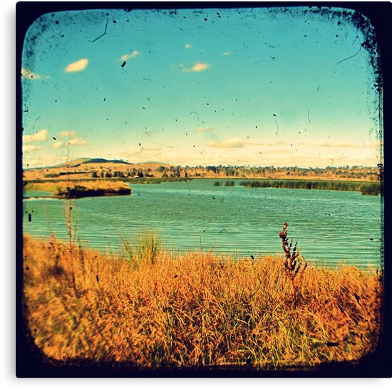 Dangars Lagoon Through The Viewfinder (TTV) by Kitsmumma