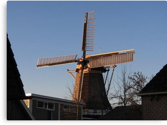 Windmill De Weyert by ienemien