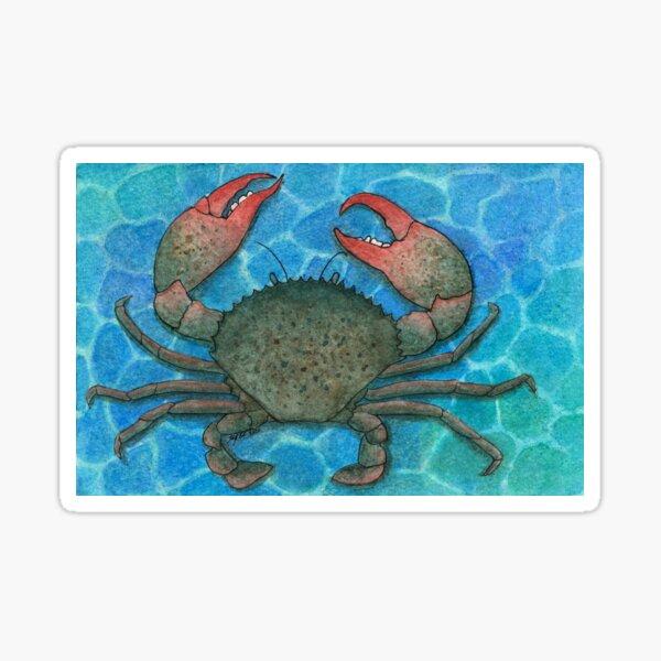Mud Crab Sticker