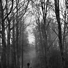 Walking the dog by ClaireWroe