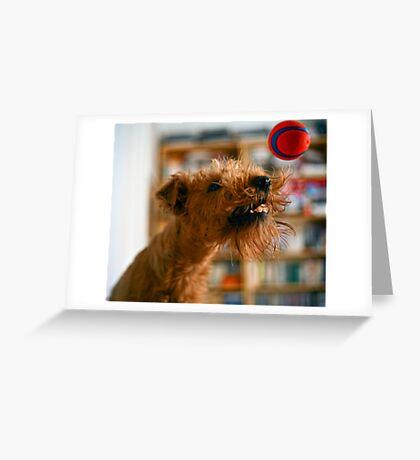 Catch! Greeting Card