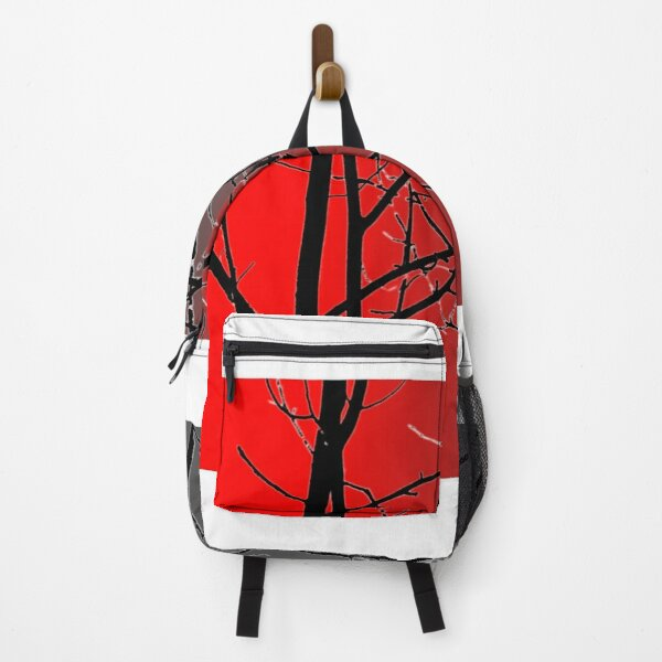 Red And Gray Backpack