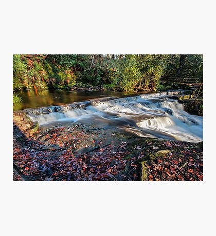 Rivelin Valley Falls II Photographic Print