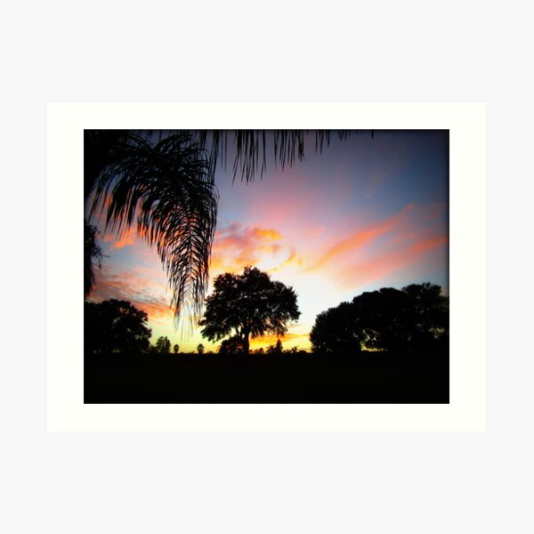 November Sunset in Florida Art Print