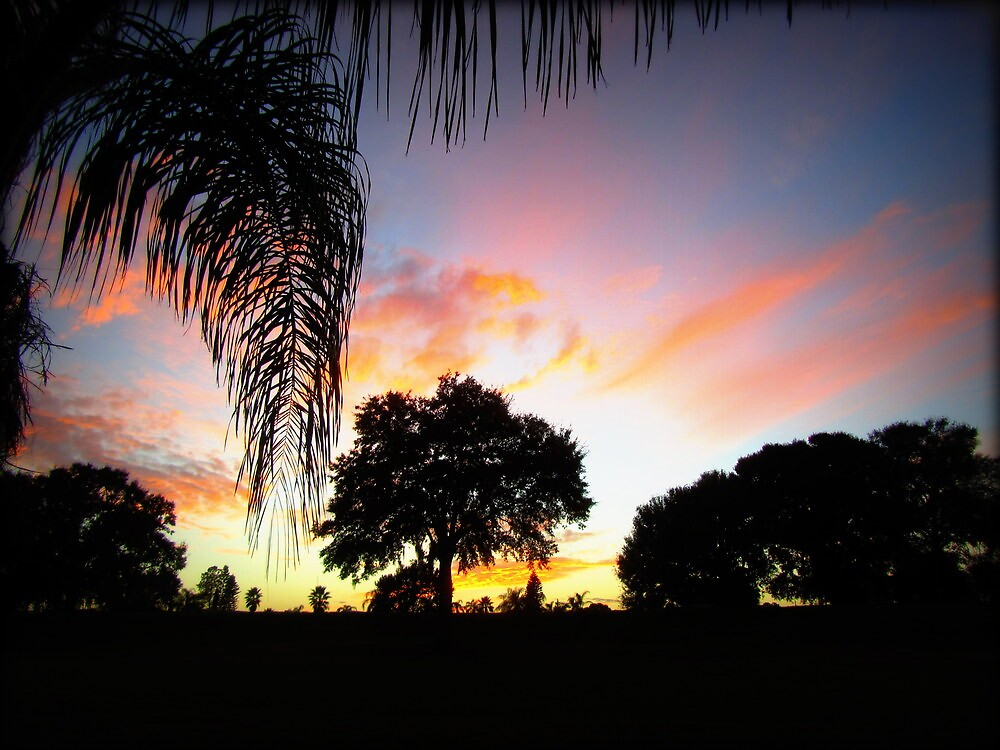 November Sunset in Florida by Debbie Robbins