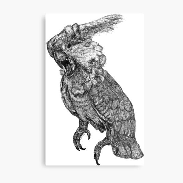 Sassy the Cockatoo Metal Print