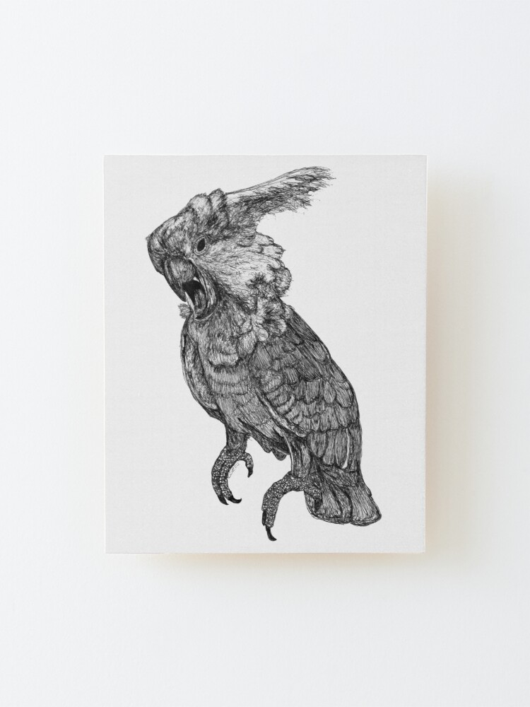 Alternate view of Sassy the Cockatoo Mounted Print