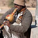 Gourd Musician by phil decocco