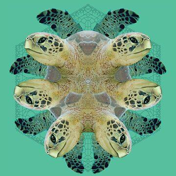 turtles by loko