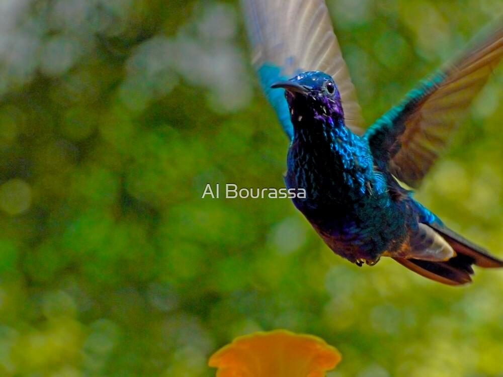 My Name is Tom Thumb by Al Bourassa