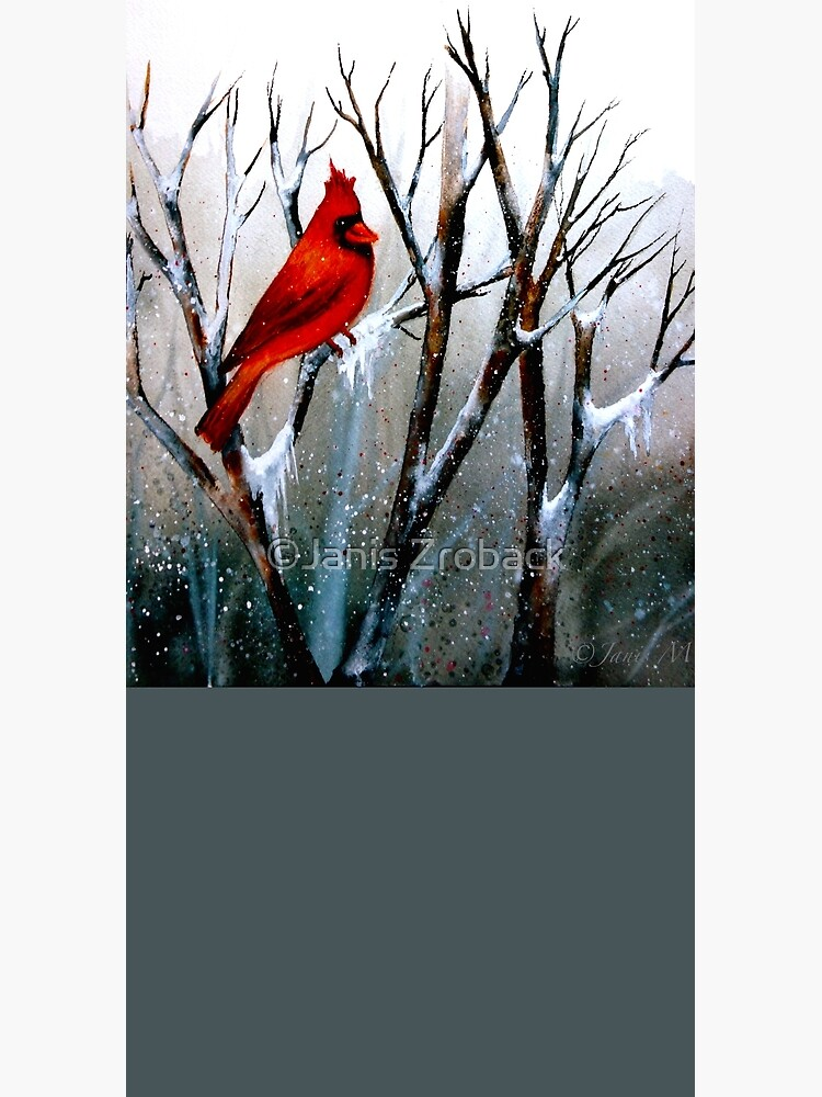 Cardinal.. by paintability