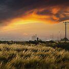 Sunset at Avalon Beach by Mick Kupresanin