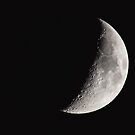 Half Moon by Sarah Van Geest