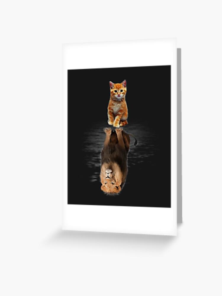 Mirror cat lion Cat And