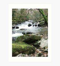 The River Plym Art Print