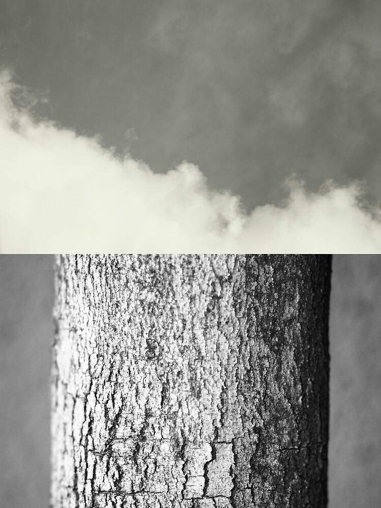 Contrasts by Bo Jong Kim
