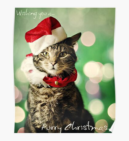 Purry Christmas Poster