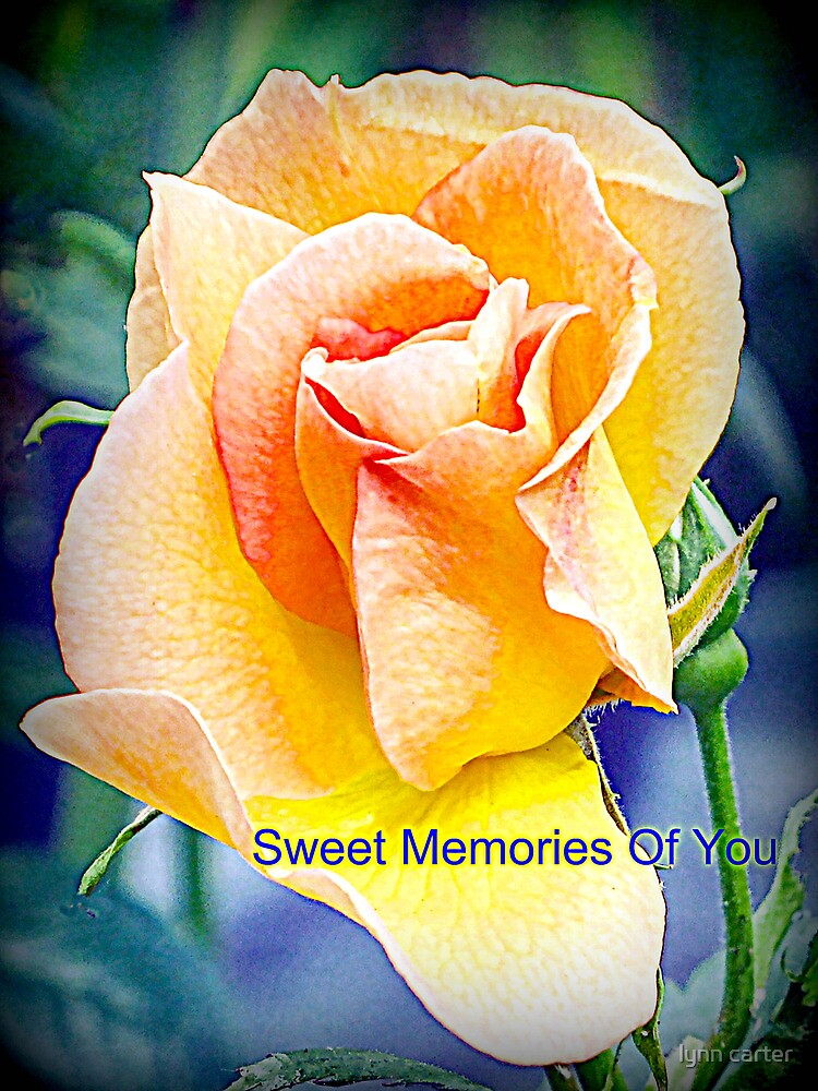 Sweet Memories Of You by lynn carter