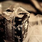 The Gift by Stephen Forbes