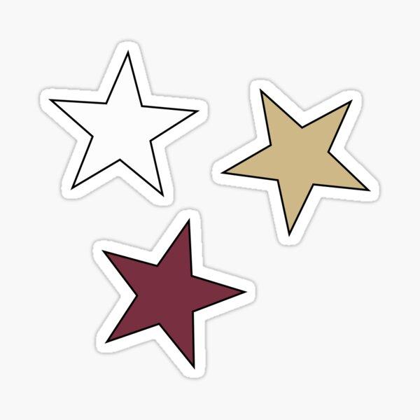 FSU Star (3-Pack) Sticker Sticker