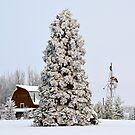 Winter Scene by Roxanne Persson