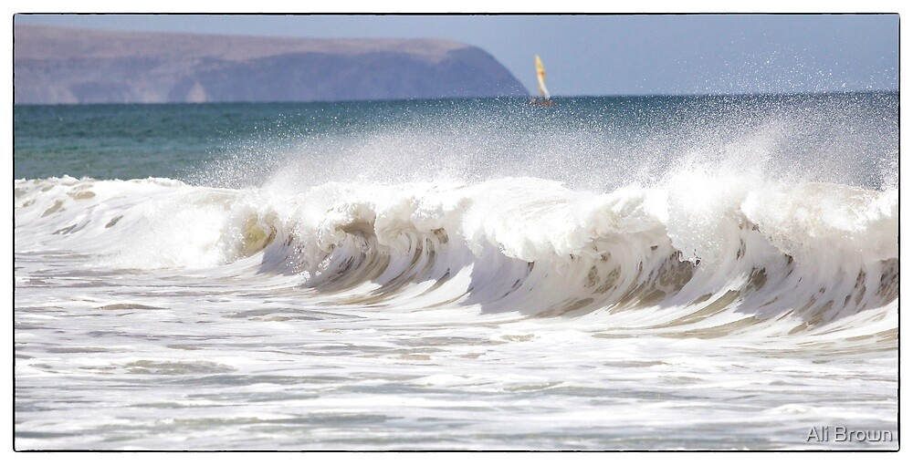 Surfs Up !! by Ali Brown